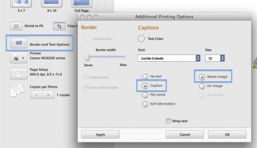 picasa-captions-under-photo-setting